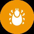 pest control bug