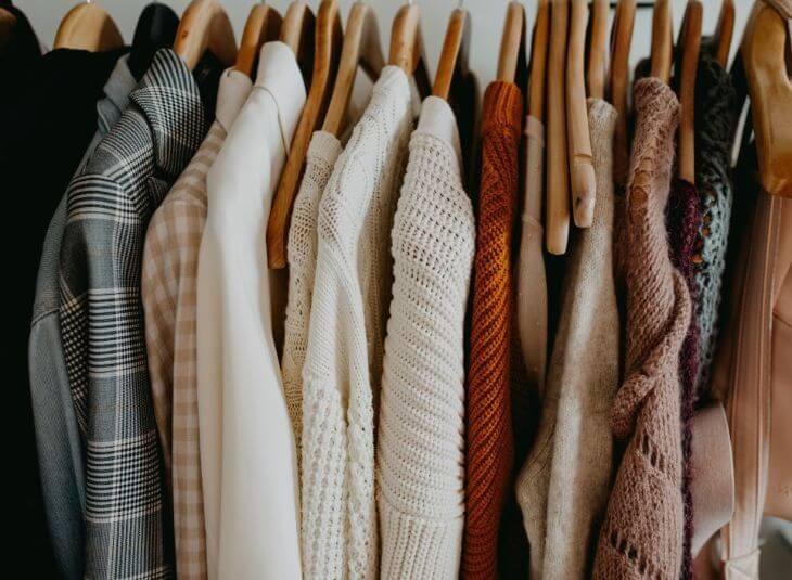 clothes moth, clothes pest